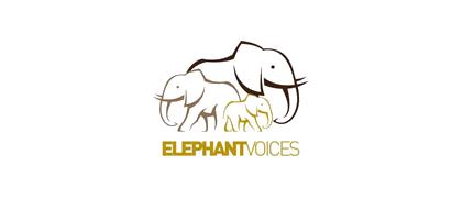 elephantvoices